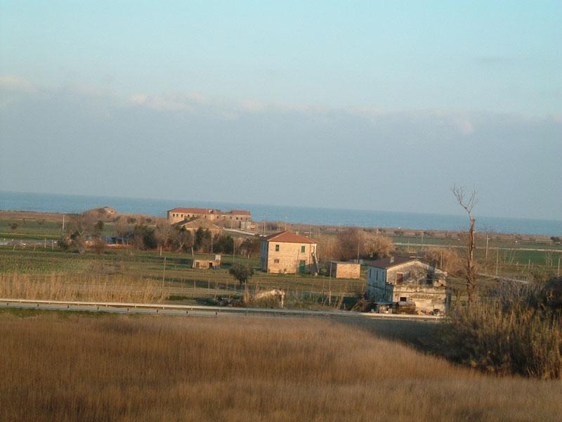La riserva naturale della Sentina vista dall'Ascoli Mare, a pochi metri dal depuratore